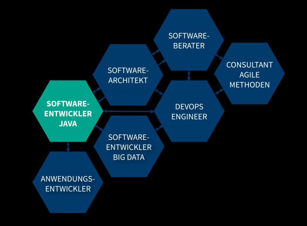 Laufbahn-Software-Entwickler